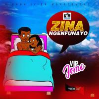 Play and download Zina Nge Nfunayo song,mp3 from eachamps.com