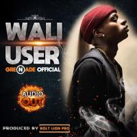 Download Wali User mp3, song on eachamps.com