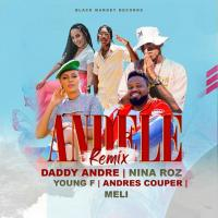 Andele Remix by Daddy Andre and Young F ft Nina Roz, Andres Couper, Meli