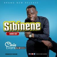 Sibinene by Chris Evans