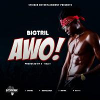 Play , share, download Awo on eachamps.com