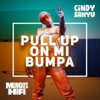 Download Pull Up On Mi Bumpa mp3, song on eachamps.com