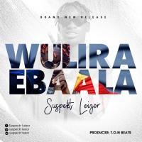 Download Wulira Ebaala mp3, song on eachamps.com