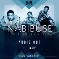 Nabibuse by New chapter Africa