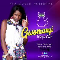 Play and download Gwomanyi song,mp3 from eachamps.com