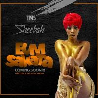 Bum Sakata by Sheebah