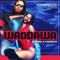 Wadawa by Sheebah ft Chosen
